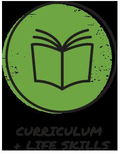 icon-curriculum